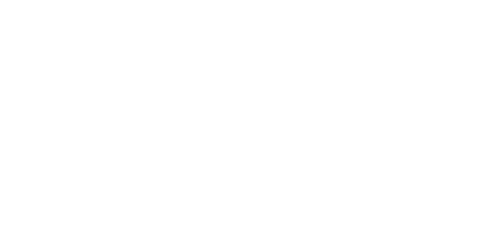 Virtutis Logo White